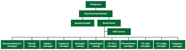 DSF-organisation